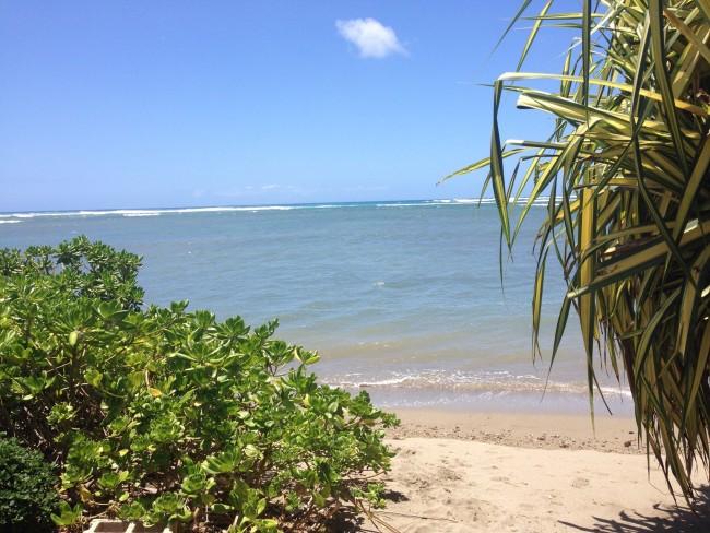 ハワイ|海|リゾート