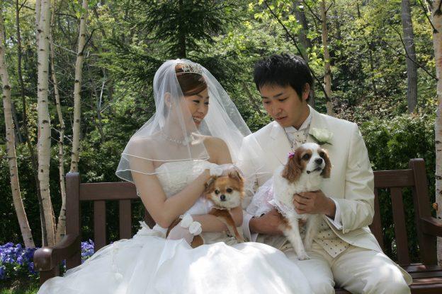 販売ドレス|犬と一緒|グランマニエのウエディングドレス